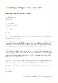 12 example of job application latter basic job appication letter