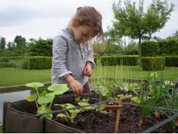 spark wonder in the garden with these family friendly ideas