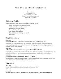exle executive resume mis executive resume sle pdf executive resume template free word