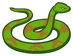 green venom snake clipart transparent