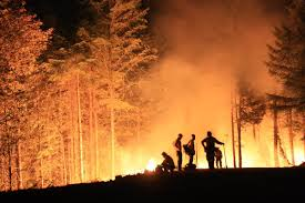 Wildfire Carson Wa by Forestservice Fuzzy Friends On Twitter