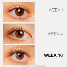 browfood phyto medic eyebrow enhancer lashfood sephora
