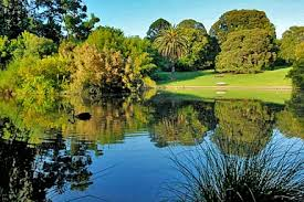 Botanical Gardens Melbourne Royal Botanic Gardens City Of Melbourne