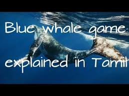 Water Challenge Explained Blue Whale Challenge Explained In Tamil