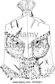 illustration of a spartan helmet viewed from front set on isolated