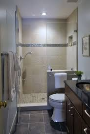Basement Bathrooms Ideas Best 25 Small Basement Bathroom Ideas On Pinterest Basement