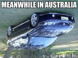 Australia Meme - meanwhile in australia meme