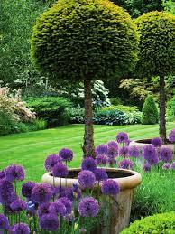 best 25 garden pots ideas on pinterest planter ideas container