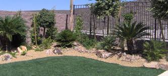 Backyard Landscaping Las Vegas Tropical Landscapes Las Vegas Pool Builder Designer And