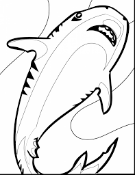 impressive printable shark coloring pages for kids with shark