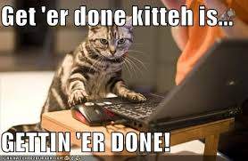 cats afterpains a morning routine life really blog