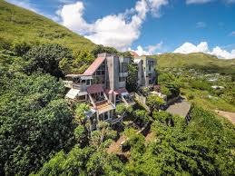 a hawaiian treehouse is on the market for 2 96 million business
