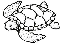 coloring pages turtles color ninja turtles coloring pages