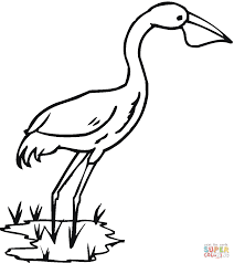 tweety bird coloring pages heron bird coloring page free printable coloring pages