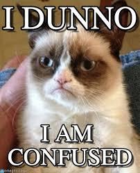 I Dunno Meme - i dunno grumpy cat meme on memegen
