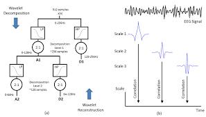 wavelet multiresolution analysis and dyadic scalogram for