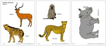 safari or african savanna animals printable templates u0026 coloring
