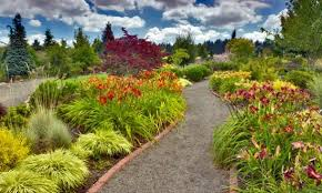 showy daylilies and ornamental grasses border the walkway at the