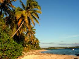 fiji islands facts for kids