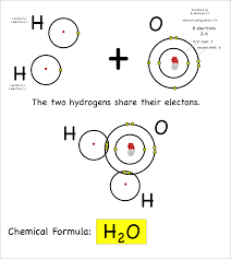 Electron Shells Worksheet Atoms Montessori Muddle