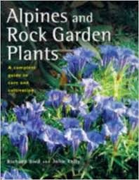 Rock Garden Plants Uk Alpines And Rock Garden Plants A Complete Guide To Care And