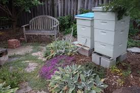 Landscaping Ideas Backyard On A Budget 40 Diy Backyard Ideas On A Small Budget