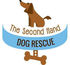 Second Hand by Pets For Adoption At The Second Hand Dog Rescue In Rochester Ny