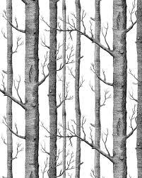 haokhome modern birch tree wallpaper non woven forest trunk wall haokhome modern birch tree wallpaper non woven forest trunk wall paper black white murals for kitchen bathroom living room decor 20 8