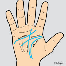 the lines in your palm can unveil secrets about your i read