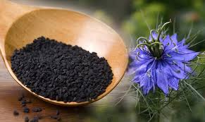 kalonji for hair growth kalonji oil black seed health benefits hair growth and side