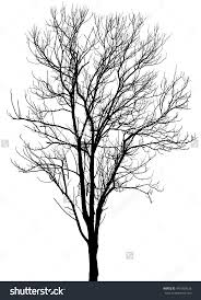 White Oak Tree Drawing Best 25 Tree Silhouette Ideas On Pinterest Family Tree Drawing