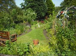 permaculture garden layout are medical herbalists under threat permaculture magazine