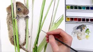 how to paint a hairy mouse in watercolour anna mason art