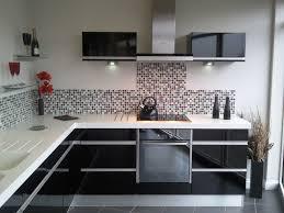 endearing modern kitchen cabinets black fabulous black white