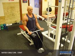 Bench Bicep Curls Seated Cable Curl Video Exercise Guide U0026 Tips