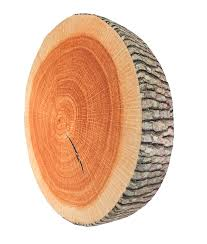 amazon com 3d tree wood slice memory foam cushion pillow doll