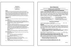 executive resume formats jospar