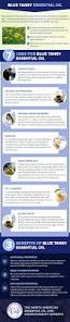 best 25 blue tansy essential oil ideas on pinterest essential
