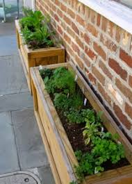 Wooden Window Flower Boxes - best flowers for spring window boxes