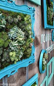 mer enn 25 flotte ideer om succulent wall gardens på pinterest