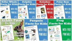 facts for free learning printables itsy bitsy
