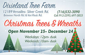 christmas trees and wreaths dixieland tree farm