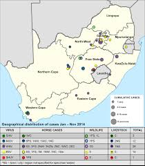 Pretoria South Africa Map by Zoonoses Research Unit U003e University Of Pretoria
