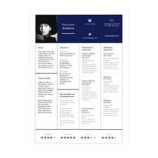 Construction Cv Template Resume Template Samples Purchase Executive Sample Cv With