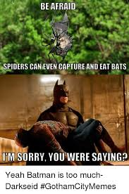 Afraid Of Spiders Meme - be afraid spiders can even capture and eat bats imsorry you were