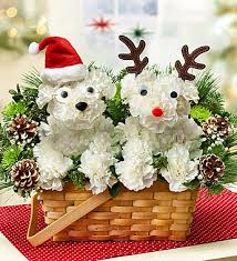 flower deals special santa paws christmas flowers for dog flower