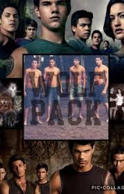 twilight wolf pack preferences book 2 abby wattpad