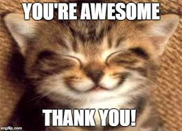 Aww Thank You Meme - 29 thank you meme meme recovery and inspirational
