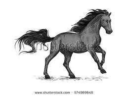 Black Mustang Horse Horse Racing On Races Wild Black Stock Vector 577872352 Shutterstock