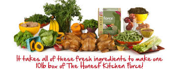 The Honest Kitchen Reviews by The Honest Kitchen Product Review Rumpydog